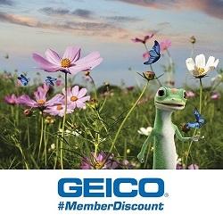 Geico-Spring-250x250.jpg